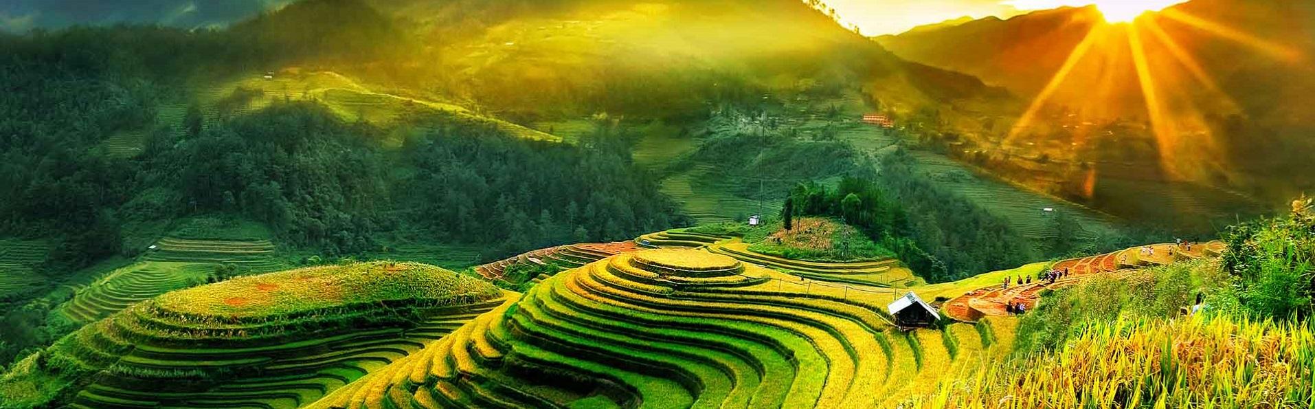 Agence locale, spécialiste de voyages luxurieux d'exception au Vietnam