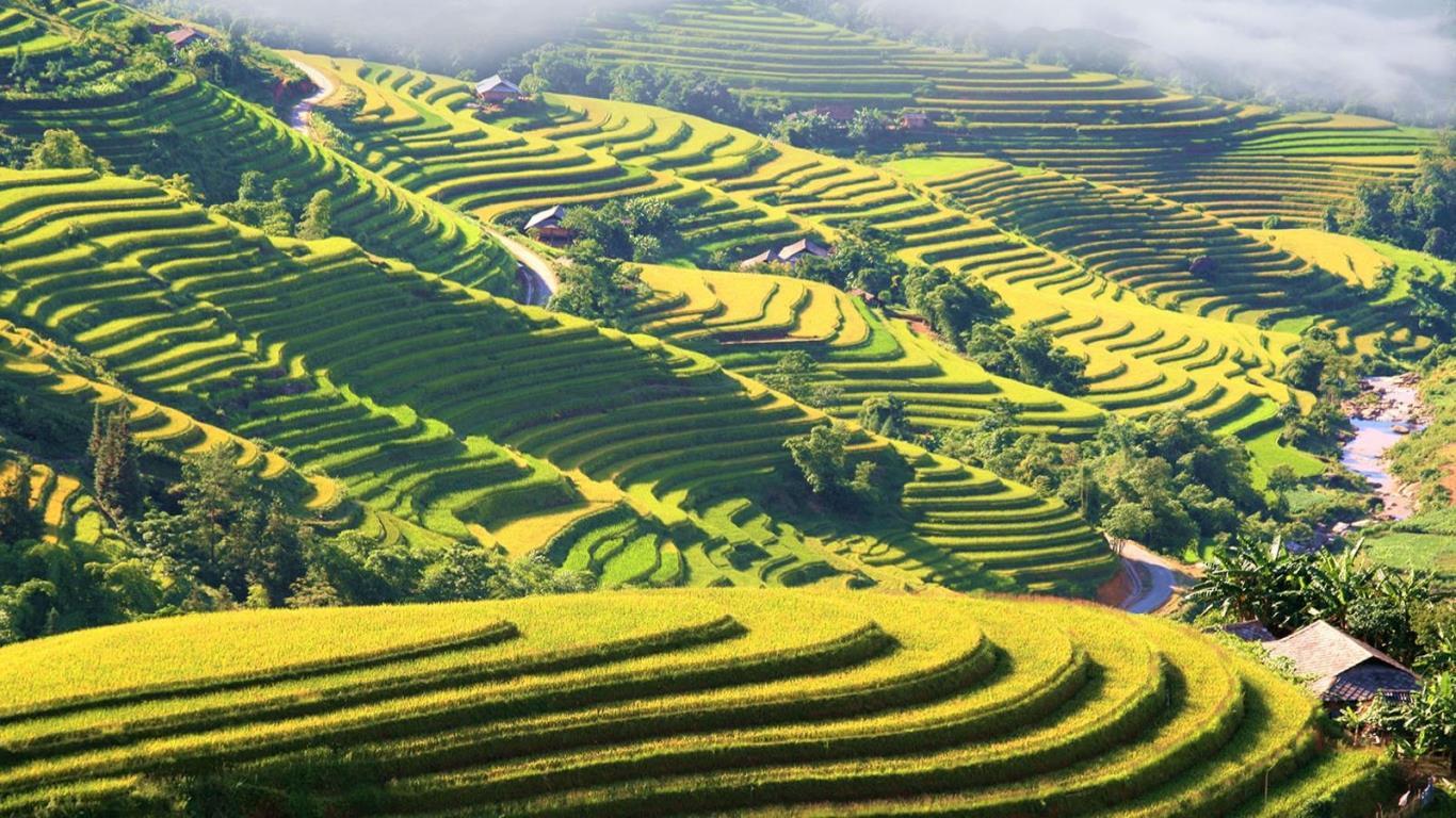 Meileur voyage au vietnam aupres agence de voyage de luxe sérieuse et professionnelle